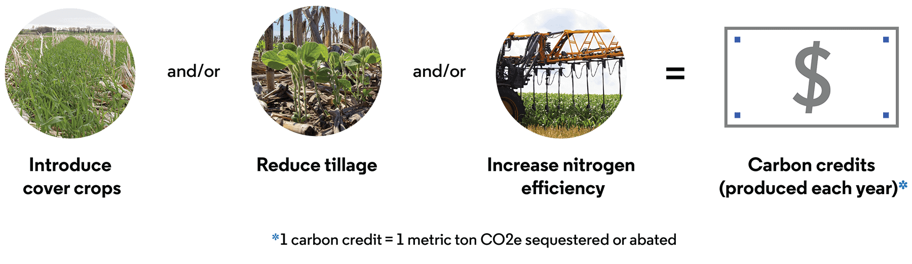 Introduce cover crops and/or reduce tillage and/or increase nitrogen efficiency equals Carbon credits (produced each year). 1 carbon credit equals 1 metric ton CO2e sequestered or abated